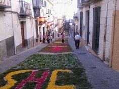Corpus Christi, Alcalá la Real (Jaén), by @nazarenoarrabal