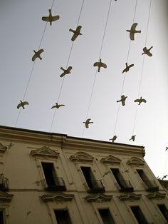 Fugle på wire.