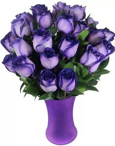 A unique gift, our Violet Spectacular Rose Bouquet is sure to make a lasting impression. Love Rose, My Flower, Pretty Flowers, Purple Flowers, Red Roses, White Roses, Purple Love, All Things Purple, Shades Of Purple