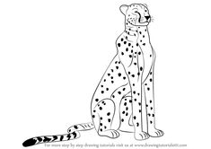 How to Draw a Cheetah Sitting step by step, learn drawing by this tutorial for kids and adults. Cheetah Drawing, Cheetah Tattoo, Learn Drawing, Learn To Draw, Drawing Poses, Drawing Sketches, Cute Animal Clipart, Cat Steps, Jungle Art