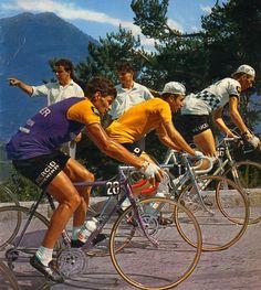 Tour de France 1966. Raymond Poulidor (1936), Lucien Aimar (1941) e Roger Pingeon (1940) [Miroir du Cyclisme]