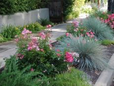 Landscaping Tips That Can Help Sell Your Home | Landscaping Ideas and Hardscape Design | HGTV