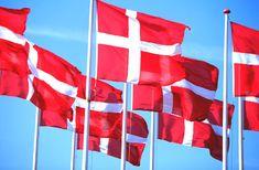 DET DANSKE FLAG - THE DANISH FLAG  dansk_flag.jpg