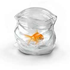 Unzipped glass bag... There was only one way to improve the plastic baggie. Make it glass. Now it's the temporary made contemporary in hand-blown glass. Use it to hold candy, spare change, your pet goldfish or anything you like.