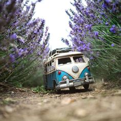 Throwback to our summer adventures in the Lavender's fields! - by travellingcars (Kim Leuenberger) Miniature Photography, Cute Photography, Creative Photography, Foto Macro, Volkswagen, Miniature Cars, Cute Little Things, Cool Sketches, Car Travel