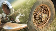 V lese našli vzácný Aston za miliony - Obrázek 6