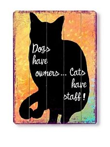 Lol...cats!