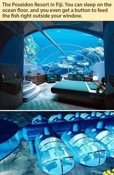 Can I live in this? Forever?