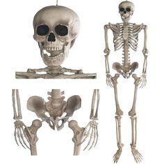 Deko Skelett 160 cm - Party & Halloween Dekoration Ganzkörper Horror Skeleton: Amazon.de: Küche & Haushalt