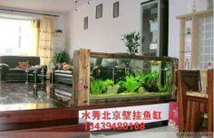 Vissen aquarium