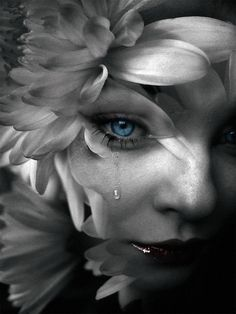 Gothic art white innocence flower, blue eyes of purity, a single tear