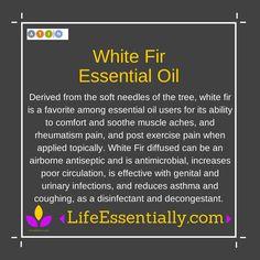 #WhiteFir Essential Oil #doTERRA #EssentialOils #LifeEssentially http://shop.LifeEssentially.com/