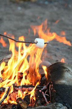Summertime bliss. Bonfire and roasting marshmallows