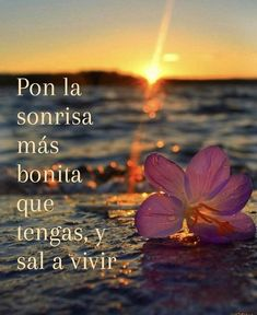 Gods Love Quotes, Words Quotes, Me Quotes, Motivational Quotes, Famous Quotes, Cute Spanish Quotes, Spanish Inspirational Quotes, Positive Phrases, Healing Words