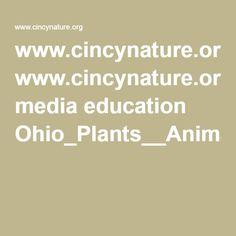 ohio plants & animals lesson plan virtual field trips