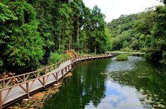 宜蘭福山植物園,真讚.jpg