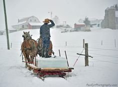 Amish Farming ~ Sarah's Country Kitchen ~ Gathering ice for the Ice House Amish Family, Amish Farm, Amish Country, Country Life, Country Kitchen, Robert Duncan Art, Amish Culture, Amish Community, Ice Houses