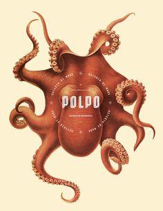 Le logo en couleurs de l'identité visuelle du restaurant Polpo.