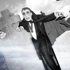 ..'Happy Halloween!' 🧛...the late great Paddy Finlay aka 'Paddy Drac' 🦇 . . . . . #irish #paddydrac #dracula #irishlegends #rip #halloween #vampire #glasnevincemetery #tallaght #boo #ireland #irishchildhood #dublinlegend #entertainer #irishcelebrity #stpatricksday #dubliners #upthedubs #dublin #dublinmemories #paddydracula #bramstoker #bats #grave #oconnellstreet Halloween Vampire, Happy Halloween, Halloween In Ireland, Bram Stoker, Dracula, Bats, Dublin, Irish, Nostalgia