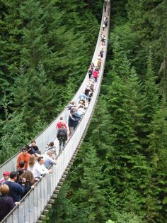 Capilano Suspension Bridge in BC..I want to see this so bad!