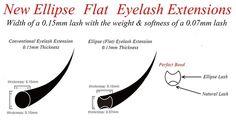 Cashmere or ellipse lashes