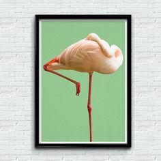 Flamingo Print, Bird Wall Art, Tropical Decor, Mint Green, Modern Minimal Animal Photography, Printable Instant Download $0.49 etsy