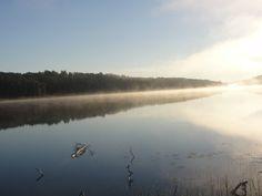 foggy lake!