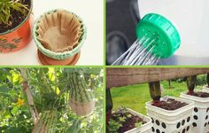 Discover common household items that can be refashioned into trellises, self-watering pots, seed organizers, and more.