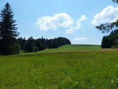 Nice fields, Niedersonthofen, Bayern