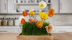 """A few stems of your favorite flower """"planted"""" in a flat of wheatgrass (available at pet and garden centers) makes for a conversation-starter at any Easter party./"""