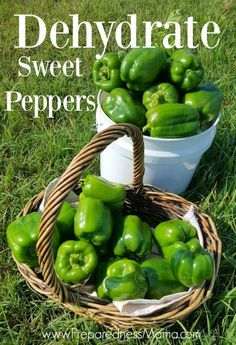 How to dehydrate sweet peppers for food storage | PreparednessMama