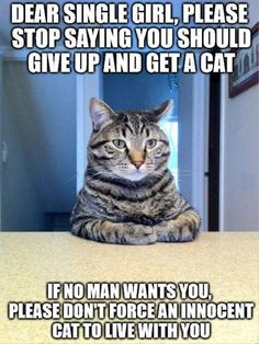 Funny Animals of The Day 26 photos Morably