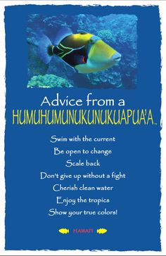 Advice from a Humuhumunukunukuapua'a- Hawai'i- Frameable Art Card – Your True Nature, Inc. Advice Quotes, Life Advice, Good Advice, Advice Cards, Animal Spirit Guides, Spirit Animal, Hawaii Quotes, Daily Quotes, Life Quotes