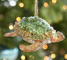 Turtle Ornament  This makes me absolutely giddy!  Pottery Barn Ocean Collection