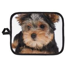 Puppy Of The Yorkshire Terrier Potholder
