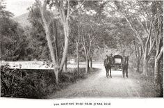 "Military Road Juana Diaz 1898 Puerto Rico Horse drawn carriage,,, Mejor conocida por ""Carretera #2"""