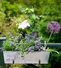 Blumenkästen Balkon Selber Bauen Ideen  Wohn Ideen