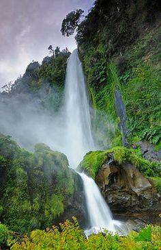Villarica National Park, Chile.