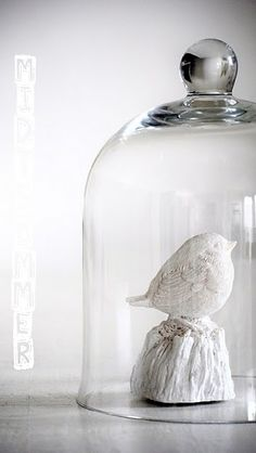 White Bird under a cloche. Glass Domes, Glass Jars, Clear Glass, Cloche Decor, The Bell Jar, Bell Jars, Deco Originale, Apothecary Jars, Small World