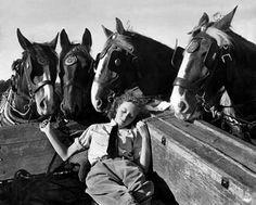 Four horses keeping watch over a sleeping Land Girl (WLA iPad Protective Sleeve).