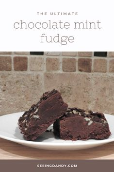 This chocolate mint fudge recipe is easy to make and delicious. Perfect for the holiday season. Plus it's gluten free! Gluten Free Fudge Recipe, Fudge Recipes, Baking Recipes, Dessert Recipes, Candy Recipes, Copycat Recipes, Appetizer Recipes, Mint Chocolate Fudge Recipe, Chocolate Desserts