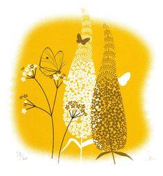 Buddleia (mustard)