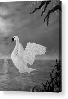Swan Canvas Print featuring the painting Lake Dancer by Faye Anastasopoulou Dancer Drawing, Fine Art Posters, Thing 1, Stretched Canvas Prints, Print Pictures, Fine Art America, Wall Art Prints, Original Art, Canvas Art