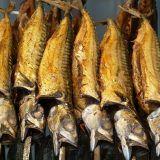 Cold smoked mackerel whole fish, · Seafoodbox. Smoked Mackerel, Smoked Trout, Smoked Fish, Good Clowns, Smokehouse, Salmon, Seafood, Maine, Cold