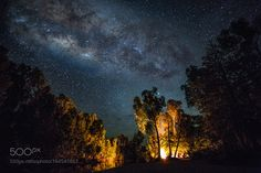 Campfire under the Star A campfire lights up the forest. @tachyeonz