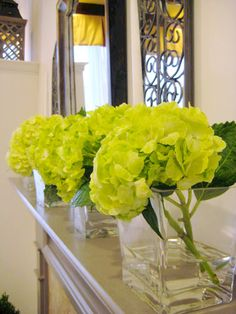 Handcrafted Geometric Vases + flowers make an elegant mantle display. The clean, contemporary lines of the vase make it the perfect go to piece....(and you won't believe the price!)