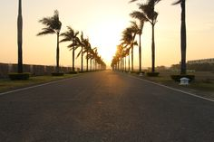 I also tried to take this photo during golden hour to the get the warm tone of the sun in the picture. Using the photography skills I have learnt and also observed looking at good photos, I tried to line up the palm trees and roads vertically to create an aligned path towards the horizon.