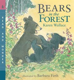 #commoncore Bears in the Forest, by Karen Wallace. Deep in a forest cave, a mother bear gives birth to two tiny cubs. As they grow, she protects her cubs fiercely and teaches them all the things they need to know to survive in the wild. The cubs must learn how to catch fish in the raging river, gather berries in the woods, and climb trees to escape from danger -- for one day, during their second summer, they will leave their mother to find homes of their own. PB 9780763645229 / Ages 4-7…
