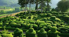 Whimsical Green Gardens of Marqueyssac