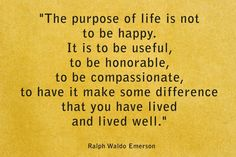 I think happiness comes from a collection of these things. We make sacrifices in honor of being useful and showing compassion to others while trying to make a difference in someone's life; in doing so, we create a space for our brain to rest in happiness & peace.